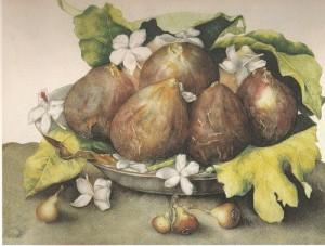 Джованна Гарцони. Натюрморт с инжиром.