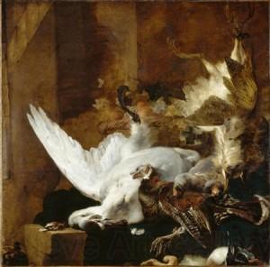 Ян Баптист Веникс, натюрморт с лебедем