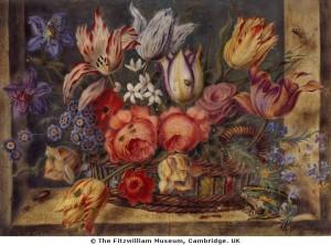 Якоб Моррель. Цветы в вазе и лягушка. Fitzwilliam Museum, UK